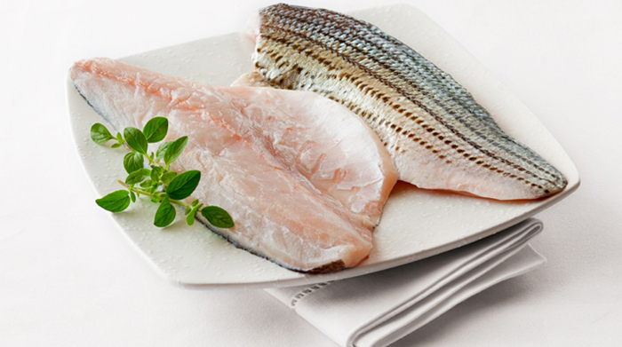 striped bass fillet